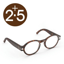 NIGHT READERS - TORTOISESHELL +2.5